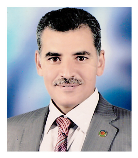 Mohamed Abdel Monem Ramadan